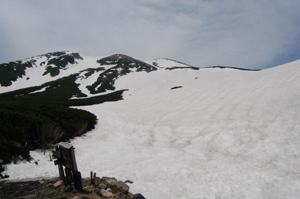 dc160520-春山12.JPG