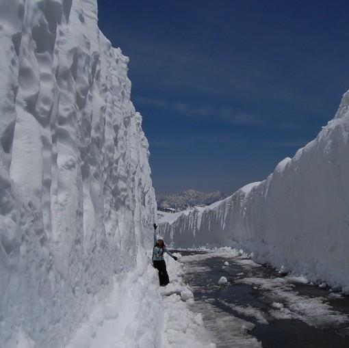 雪の回廊へ!乗鞍岳春山バス
